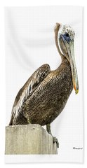 Majestic Gulf Shores Pelican 1071a Beach Towel