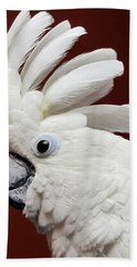 Maggie The Umbrella Cockatoo Beach Towel