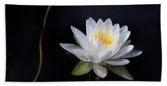 Magical Water Lily Beach Towel