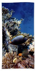 Magnificent Red Sea World Beach Sheet