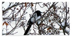 Beach Towel featuring the photograph Magpie In A Snowstorm by Will Borden