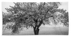Maine Apple Tree In Fog Beach Sheet