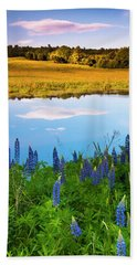 Beach Towel featuring the photograph Maine Field Of Lupines by Ranjay Mitra