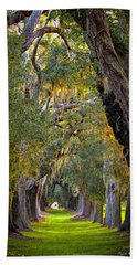 Majestic Ave Of Oaks St Simons Island Ga Tree Art Beach Towel