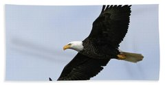 Beach Towel featuring the photograph Majestic Bald Eagle by Sue Harper