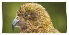 Kea Portrait Beach Sheet