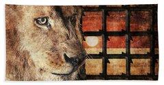 Majestic Lion In Captivity Beach Sheet