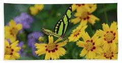 Malachite Butterfly Beach Sheet
