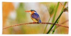 Malachite Kingfisher Hunting Beach Towel