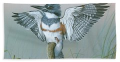 Male Belted Kingfisher Beach Towel