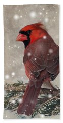 Male Cardinal In Snow #1 Beach Towel by Patti Deters
