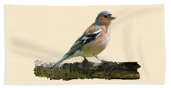 Male Chaffinch, Transparent Background Beach Towel