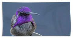 Male Costas Hummingbird On Sign  Beach Towel by Anne Rodkin