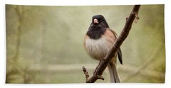 Beach Sheet featuring the photograph Male Dark-eyed Junco - 365-186 by Inge Riis McDonald
