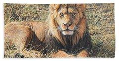 Male Lion Portrait Beach Towel