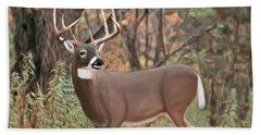 Male Mule Deer Painting Beach Sheet by Walter Colvin