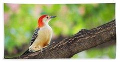 Male Red-bellied Woodpecker Beach Sheet