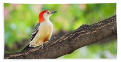 Male Red-bellied Woodpecker Beach Towel