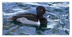 Male Ring-necked Duck  Beach Towel by Shoal Hollingsworth