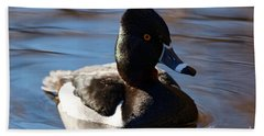 Beach Towel featuring the photograph Male Ring-necked Duck by Sue Harper