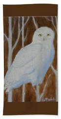 Male Snowy Owl Portrait Beach Sheet