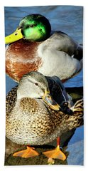 Mallard Couple Beach Towel