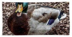 Beach Towel featuring the photograph Mallard Duck by Joann Copeland-Paul