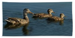 Beach Towel featuring the photograph Mallard Family Outing by Jean Noren