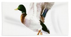 Mallard Flying Away Watercolor Beach Towel