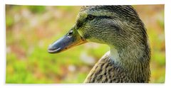 Mallard Portrait - Female Beach Sheet