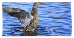 Mallard Wing Action Beach Towel