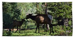 Elk Calf - Mother Rmnp Co Beach Towel