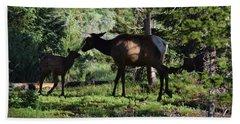 Elk Calf - Mother Rmnp Co Beach Sheet