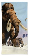Mammoths From The Ice Age Beach Towel
