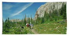 Man Hiking With Two Llamas High Alpine Mountain Trail Beach Towel