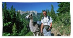 Man Posing With A Llama On A High Mountain Trail Beach Towel
