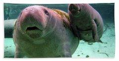 Manatee Mom And Calf Beach Towel
