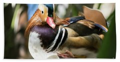 Mandarin Duck Raising One Foot. Beach Towel