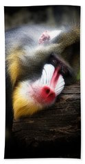 Mandrill Baboon Beach Towel