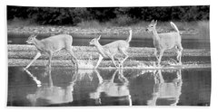 Beach Towel featuring the photograph Many Glacier Deer 1 by Adam Jewell