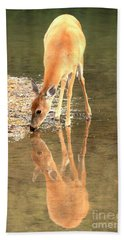 Beach Towel featuring the photograph Deer Reflections by Adam Jewell