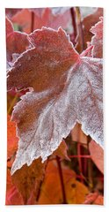Beach Towel featuring the photograph Maple Frost  by Doug Gibbons