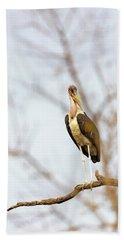 Marabou Stork In South Africa Beach Sheet