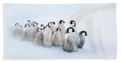 March Of The Penguins Beach Towel