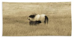 Mare And Foal  Beach Towel