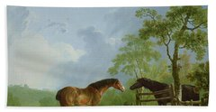 Mare And Stallion In A Landscape Beach Towel