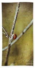Marienkaefer - Ladybird Beach Sheet