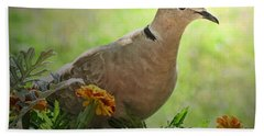 Beach Towel featuring the photograph Marigold Dove by Debbie Portwood