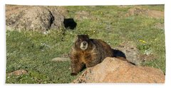 Marmot Beach Towel