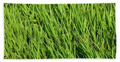 Marsh Grasses Beach Towel